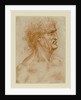 Head Of A Man In Profile Crowned With Laurel by Anonymous