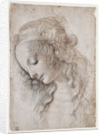 Study Of Female Face by Anonymous