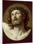 Christ Crowned with Thorns by Anonymous