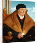 Nuremberg nobleman by Anonymous