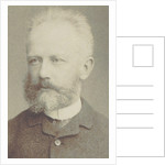 Portrait of the composer Pyotr Ilyich Tchaikovsky, 1884 by Anonymous