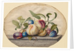 Fruit Arrangement: Peaches and Plumbs on a Slab of Marble, 1742 by Georg Dionysius Ehret