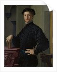 Portrait of a Young Man, 1530s by Agnolo Bronzino