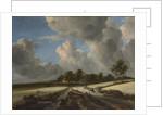 Wheat Fields, ca. 1670 by Jacob van Ruisdael