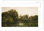 A River Landscape with Storks, 1864 by Charles Francois Daubigny