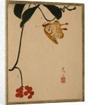 Red Berry Plant and Butterfly by Shibata Zeshin