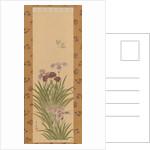 Irises and Moth, ca. 1850 by Suzuki Kiitsu
