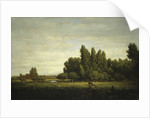 A Meadow Bordered by Trees, ca. 1845 by Theodore Rousseau