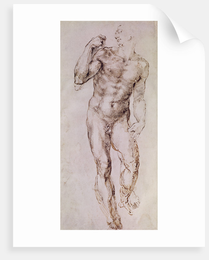 Sketch of David with his Sling by Michelangelo Buonarroti