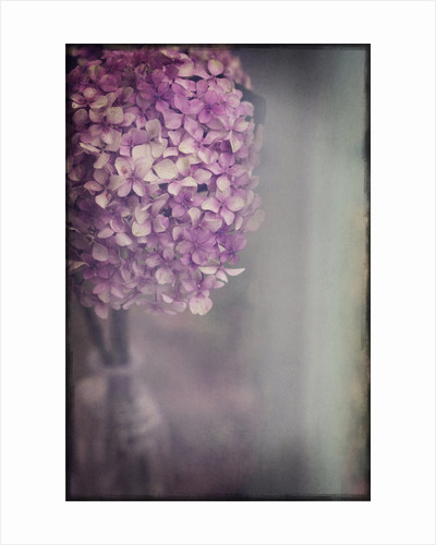 Bohemian Hydrangea by Heather Runting
