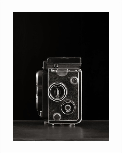 Camera II by Kelly Hoppen
