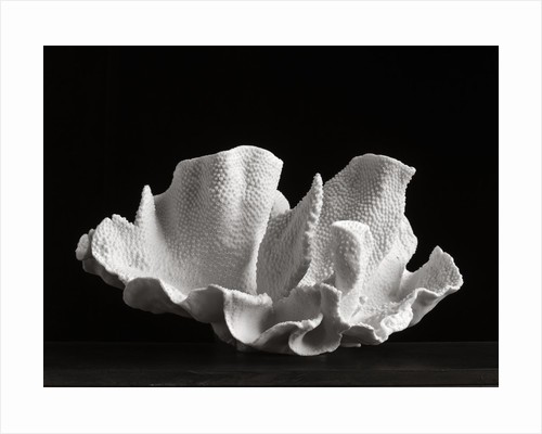 Coral V by Kelly Hoppen