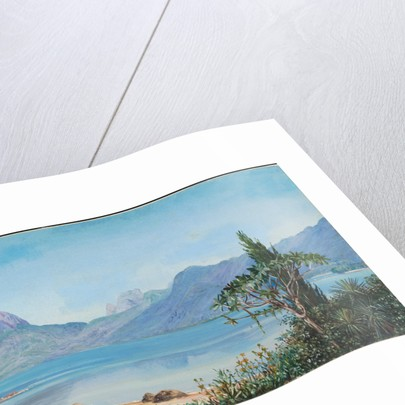 86. Lagoa de Freitas, near Rio, Brazil, 1880 by Marianne North