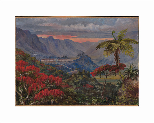 35. View of the Jesuit college of Caracas, Minas Geraes, Brazil, 1880 by Marianne North