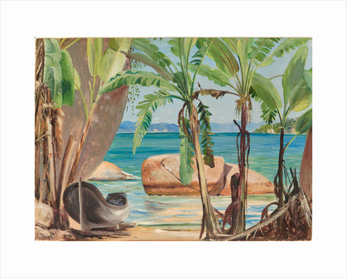 150. Bananas and rocks at Paquita, Brazil, 1873 by Marianne North