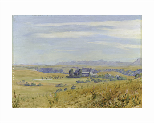 444. View of Cadle's Hotel and the Kloof beyond, near Grahamstown by Marianne North