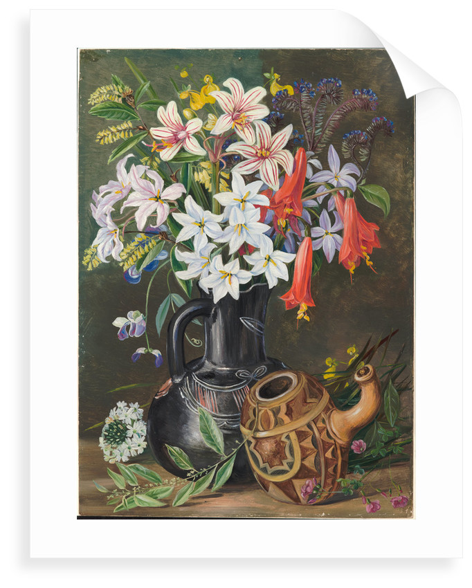 27. Chilian lilies and other flowers in black jug and ornamented gourd for mate, 1880 by Marianne North
