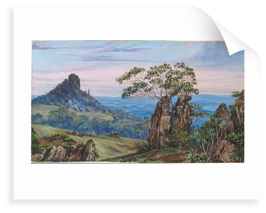 74. The iron rocks of Casa Branca, Brazil, 1880 by Marianne North