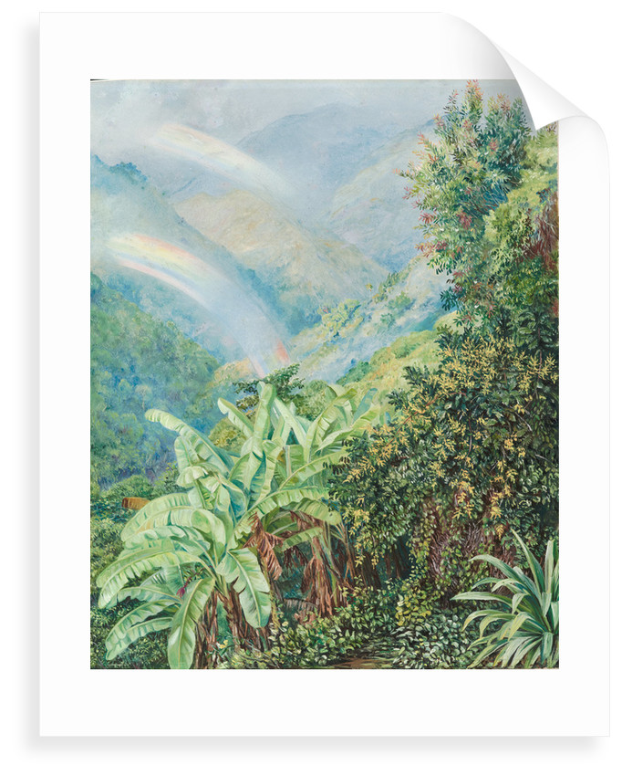 126. View from the artist's house in Jamaica, with double rainbow, 1872 by Marianne North