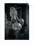 The hands that pick the food I eat by Jason Ingram