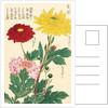 Honzo Zufu [Chrysanths] by Kan'en Iwasaki