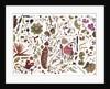 Herbarium Specimen Painting page 3 by Rachel Pedder-Smith