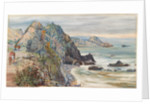 24. Sea-shore near Valparaiso, Chili, 1880 by Marianne North