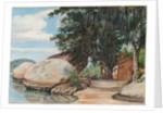 40. Boulders, fisherman's cottage and tree hung with air plant, at Parquita, Brazil, 1880 by Marianne North