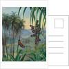 50. Landscape at Morro Velho, Brazil, 1880 by Marianne North
