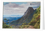 61. Organ peak at Theresoplis and bay of Rio below, 1880 by Marianne North