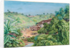 79. View of the old gold works at Morro Velho, Brazil, 1880 by Marianne North