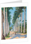 85. Side avenue of royal palms at Botafoga, Brazil,1880 by Marianne North