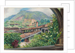 95. View of the old gold works from the verandah at Morro Velho, Brazil, 1880 by Marianne North