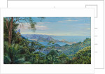 138. View of the Bay of Rio and the Sugarloaf Mountain, Brazil, 1872- 1873 by Marianne North