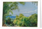 149. View over Port Royal, Jamaica, with bamboos in the foreground, 1872. by Marianne North