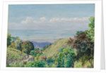 161. View over Kingston and Port Royal from Craigton, Jamaica, 1872 by Marianne North