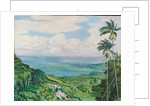 164. View over Ochos Rios, Jamaica, 1872 by Marianne North