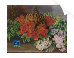 165. Cultivated and wild flowers, Jamaica, 1872 by Marianne North