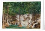 166. One of the sources of the roaring river, Jamaica, 1872 by Marianne North