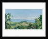172. View from spring gardens, Buff's Bay, Jamaica, 1872 by Marianne North