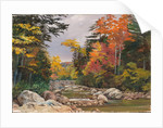 191. Autumn tints in the White Mountains, New Hampshire, United States, 1871 by Marianne North
