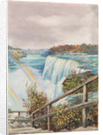 193. The American fall from Pearl Island, Niagara, 1871 by Marianne North