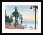 195. A view of Lake Tahoe and Nevada mountains, California, 1875 by Marianne North
