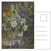 16. Wild Flowers of Chanleon, Chili by Marianne North