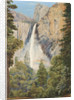 196. Rainbow over the Bridal Veil Fall, Yosemite, California by Marianne North