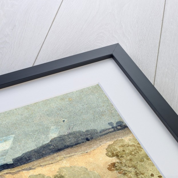 Brignall Banks on the Greta by John Sell Cotman