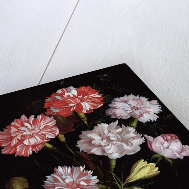Floral Study: Carnations in a Vase by Balthasar van der Ast