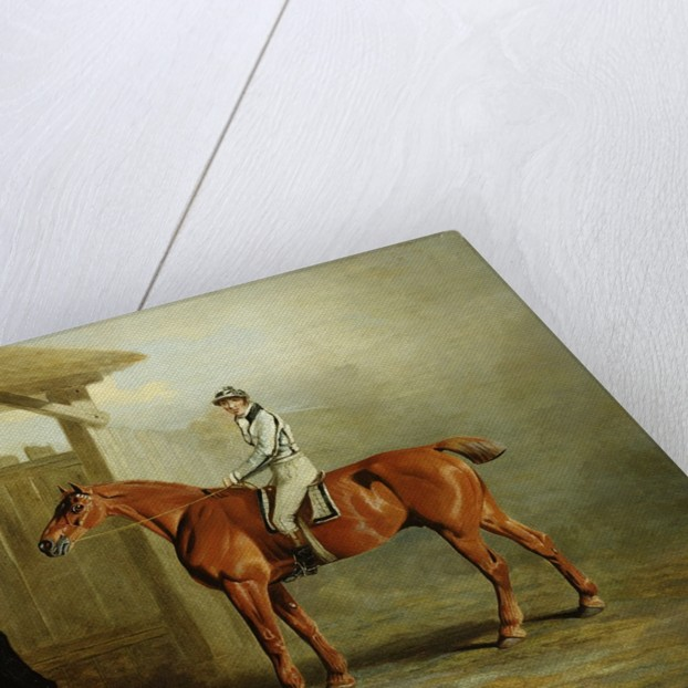 Soothsayer, Winner of the St. Leger 1811 by English School