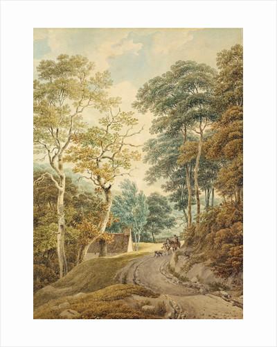 A Lane near Hindhead by Michael Rooker