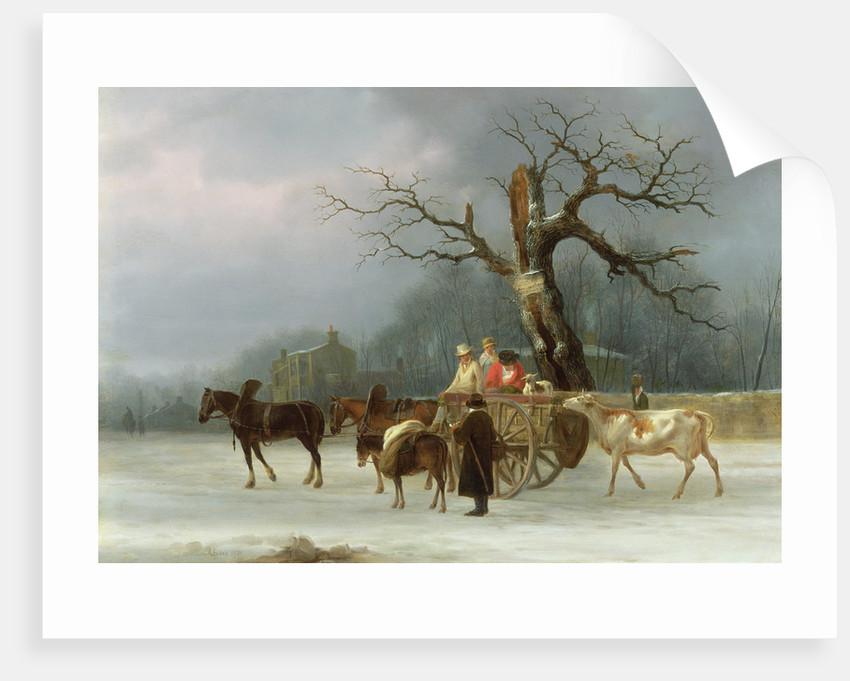 The Skyrack Oak, Leeds, 1830 by Joseph Rhodes